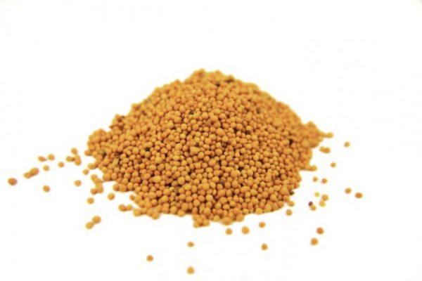 Semente de Mostarda - Granel - 100g-0