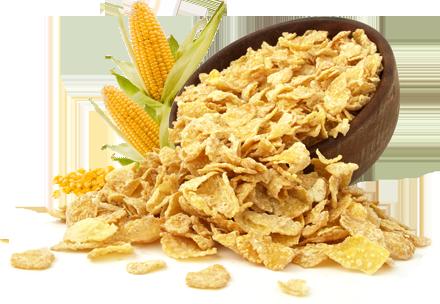 Corn Flakes Natural - Granel - 100g-0
